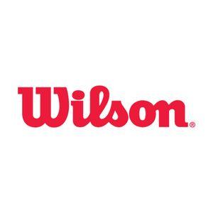 محصولات اصل ویلسون
