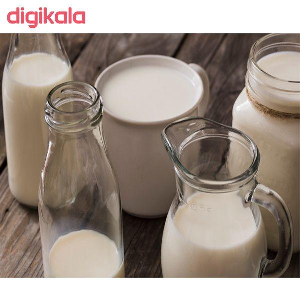 شیر پرچرب دومینو مقدار 1 لیتر main 1 6