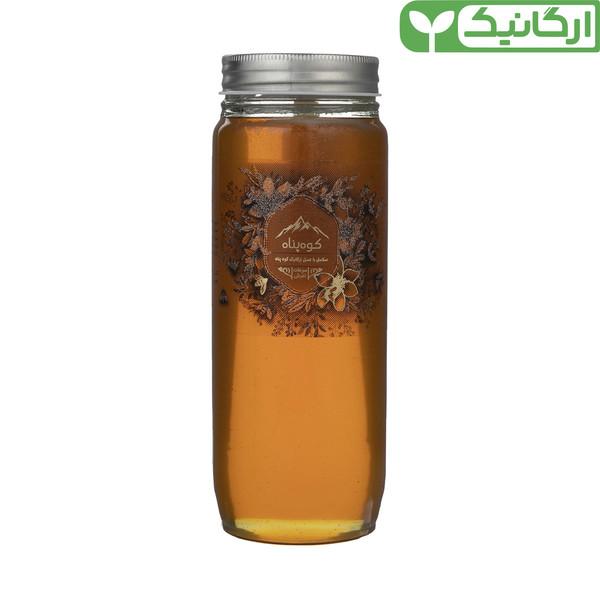 عسل ارگانیک گون کوهپناه - 1000 گرم