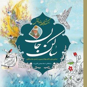 کتاب رنگآمیزی ساکن جان اثر مجتبی فائزی انتشارات سبزان