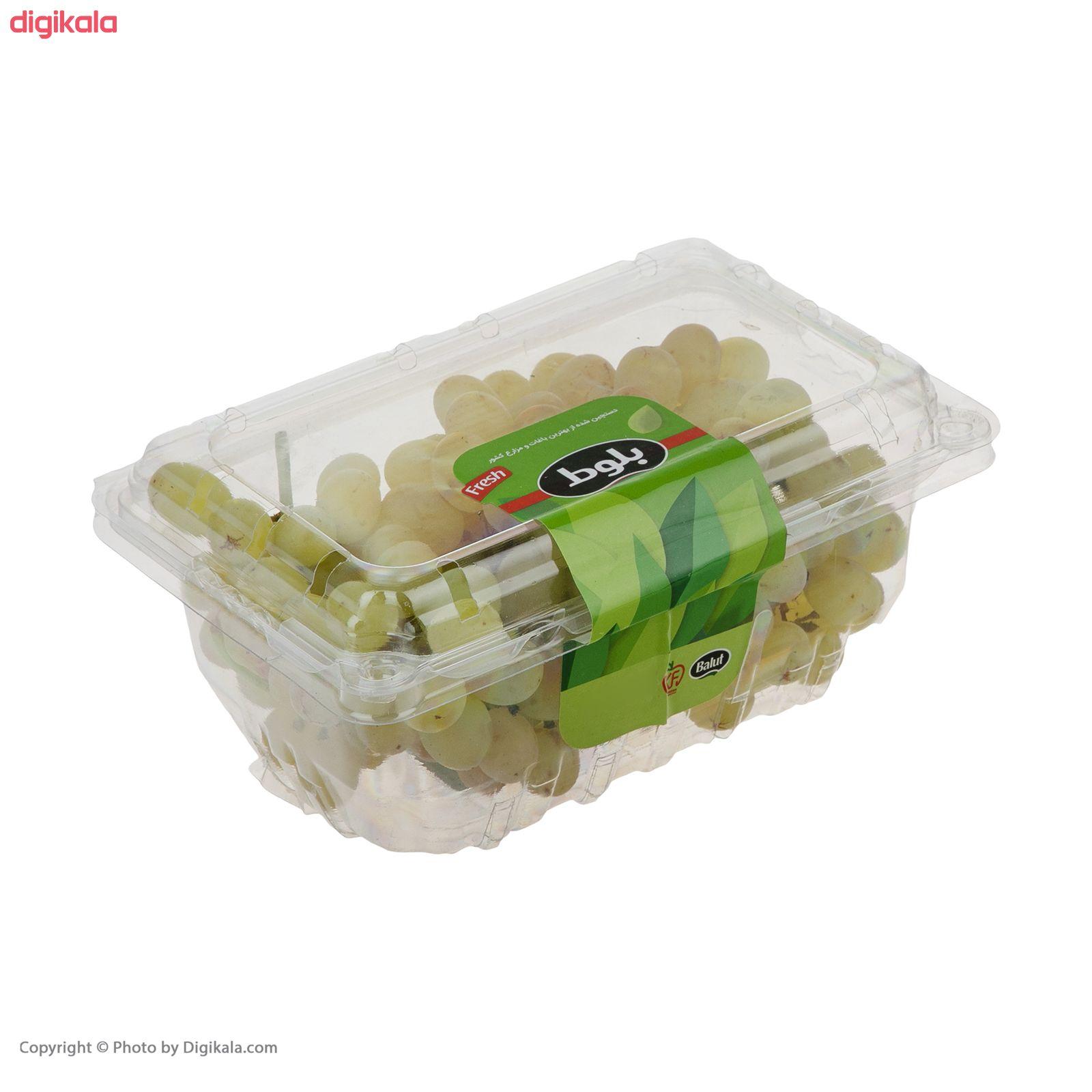 انگور بی دانه سفید بلوط - 500 گرم main 1 2
