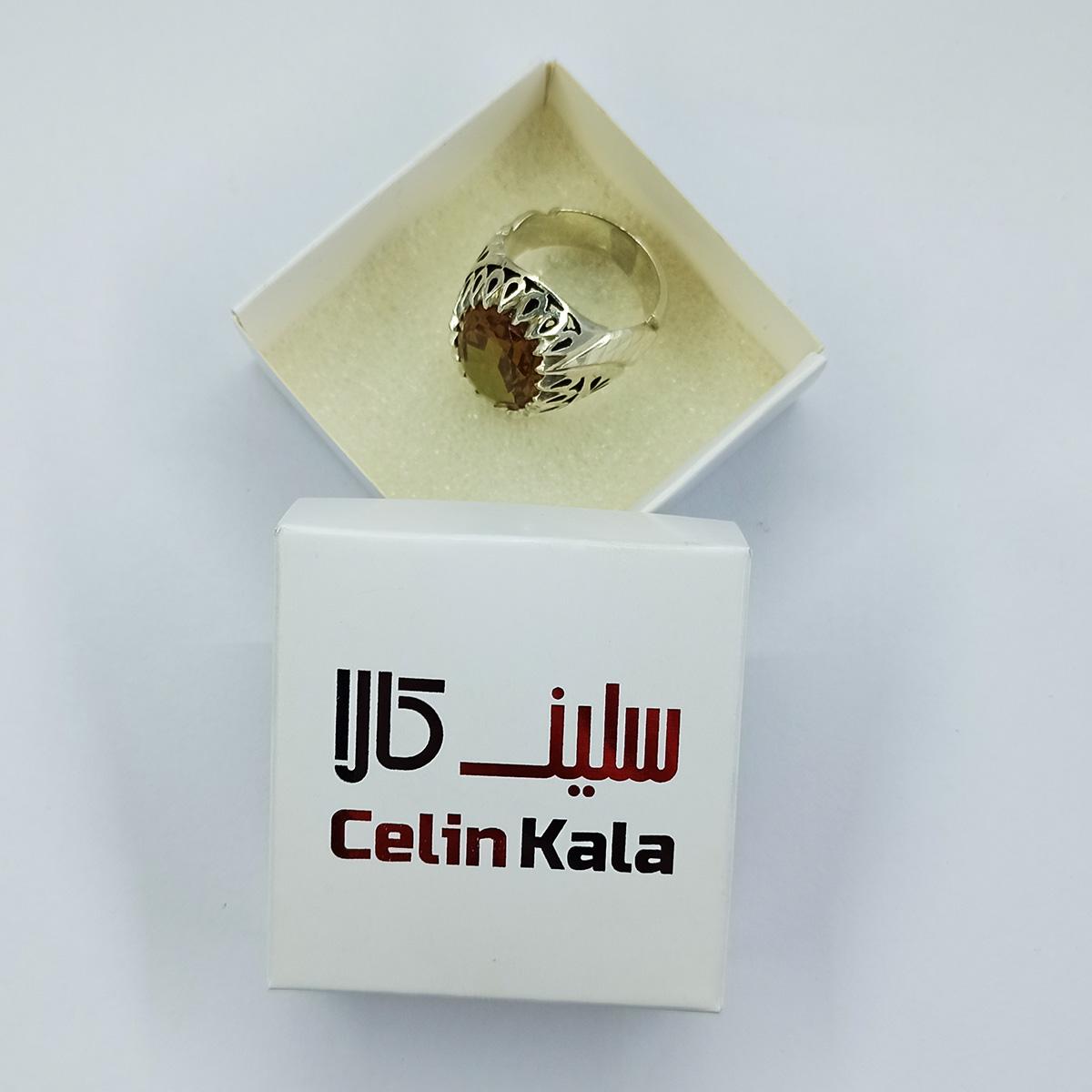 انگشتر نقره مردانه سلین کالا مدل الکساندریت کد ce-As115