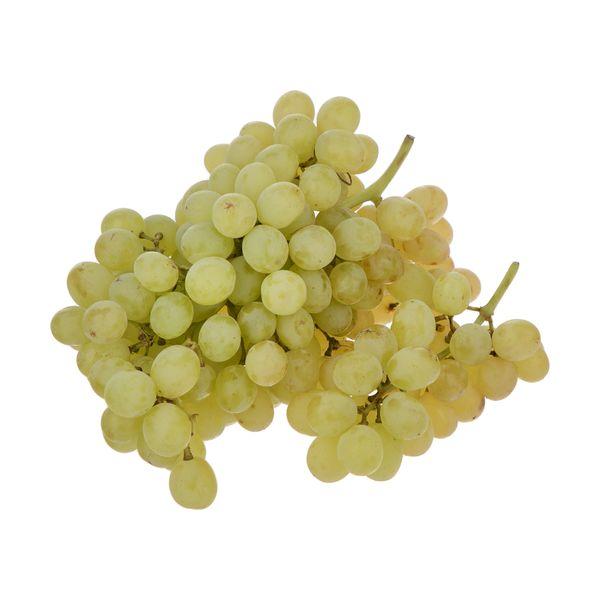 انگور بی دانه سفید بلوط - 500 گرم