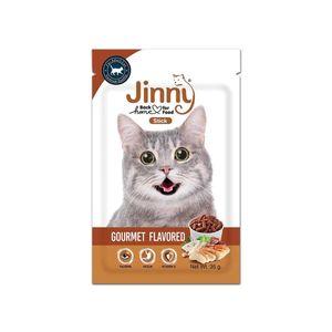 غذای تشویقی گربه جینی مدل gourmet flavored وزن 35گرم