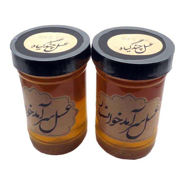 عسل طبیعی سرآمد چند گیاه - 900 گرم بسته 2 عددی