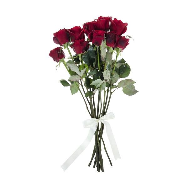 گل رز هلندی قرمز دسته 10 عددی