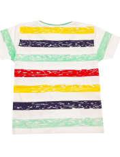 ست تی شرت و شلوارک پسرانه کد S -  - 2