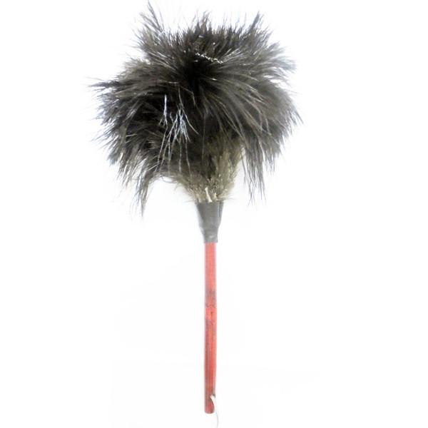 گردگیر آلین مدل Ostrich Feather 4