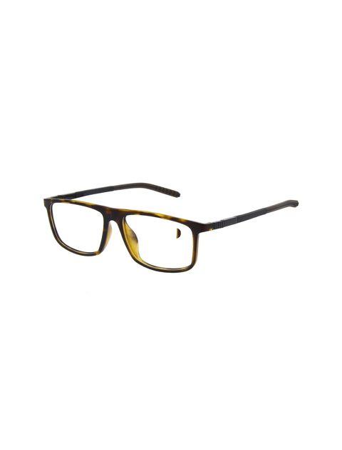 Sunglasses - اسپاین - قهوه اي - 1