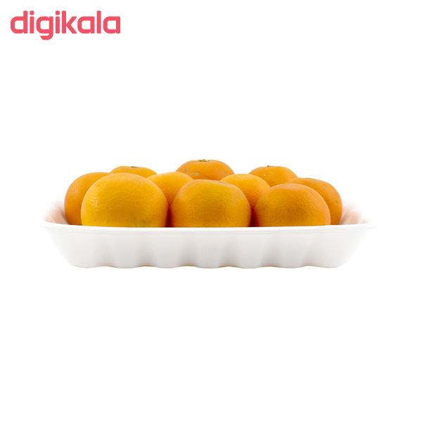 پرتقال جنوب درجه یک - 4 کیلوگرم main 1 3