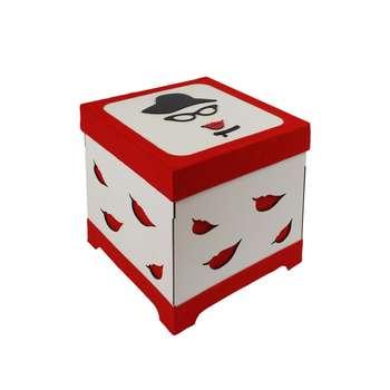 جعبه هدیه طرح خانم شیک کد 2424