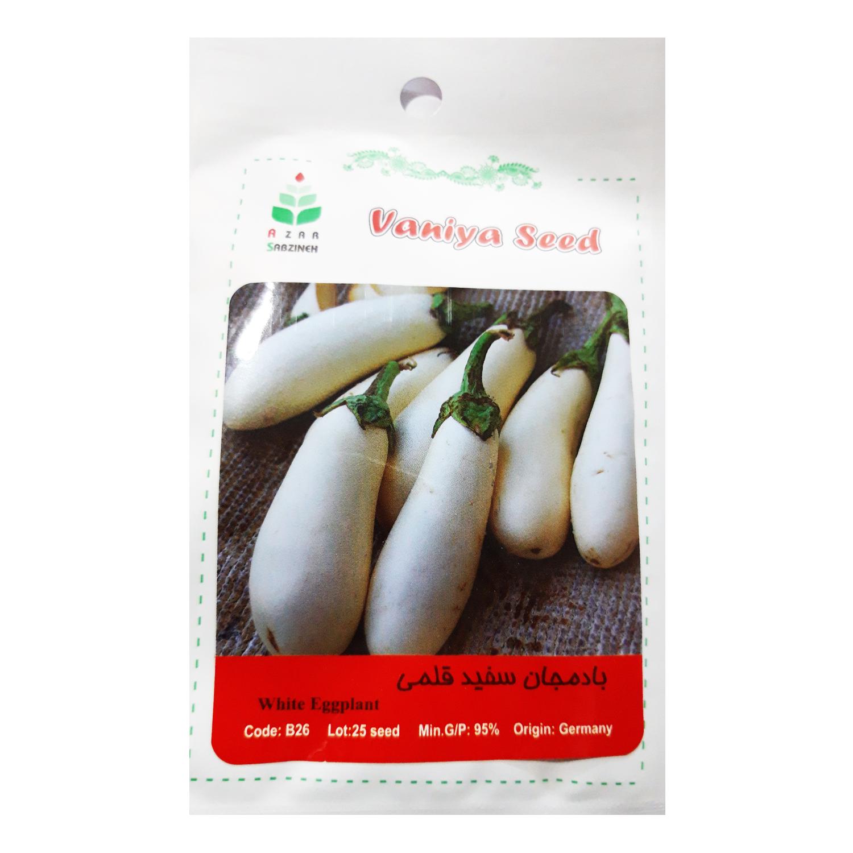 بذر بادمجان سفید قلمی  آذر سبزینه مدل A188