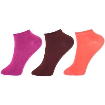 جوراب زنانه پنتی مجموعه 3 عددی کد WPC2117