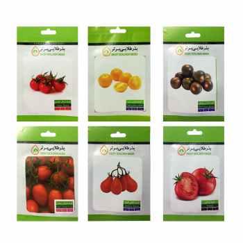 بذر گوجه فرنگی بذر طلایی برتر کد P-G-BZT-06 مجموعه 6 عددی