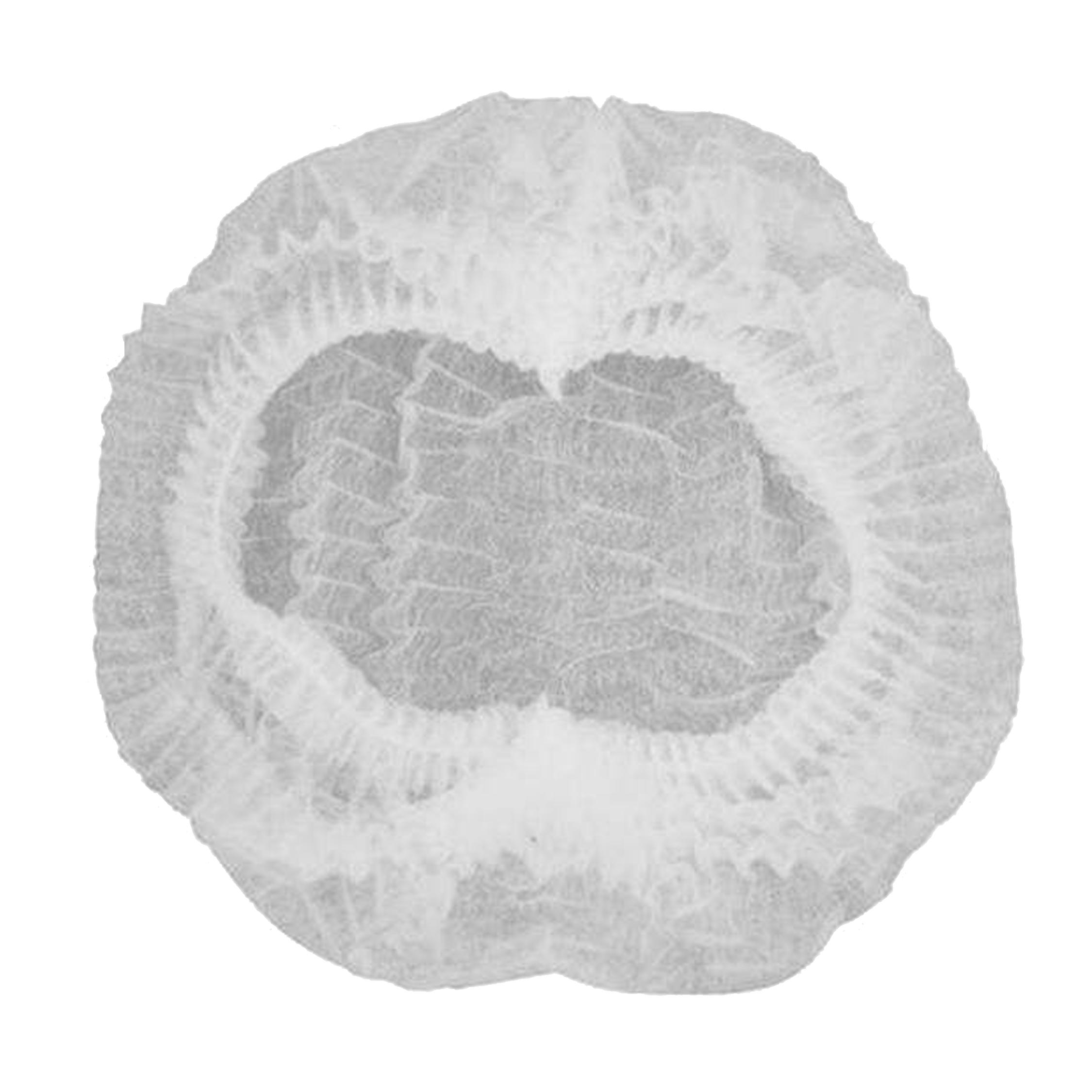 کلاه یکبار مصرف الین پلاست مدل KOL10 بسته 10 عددی