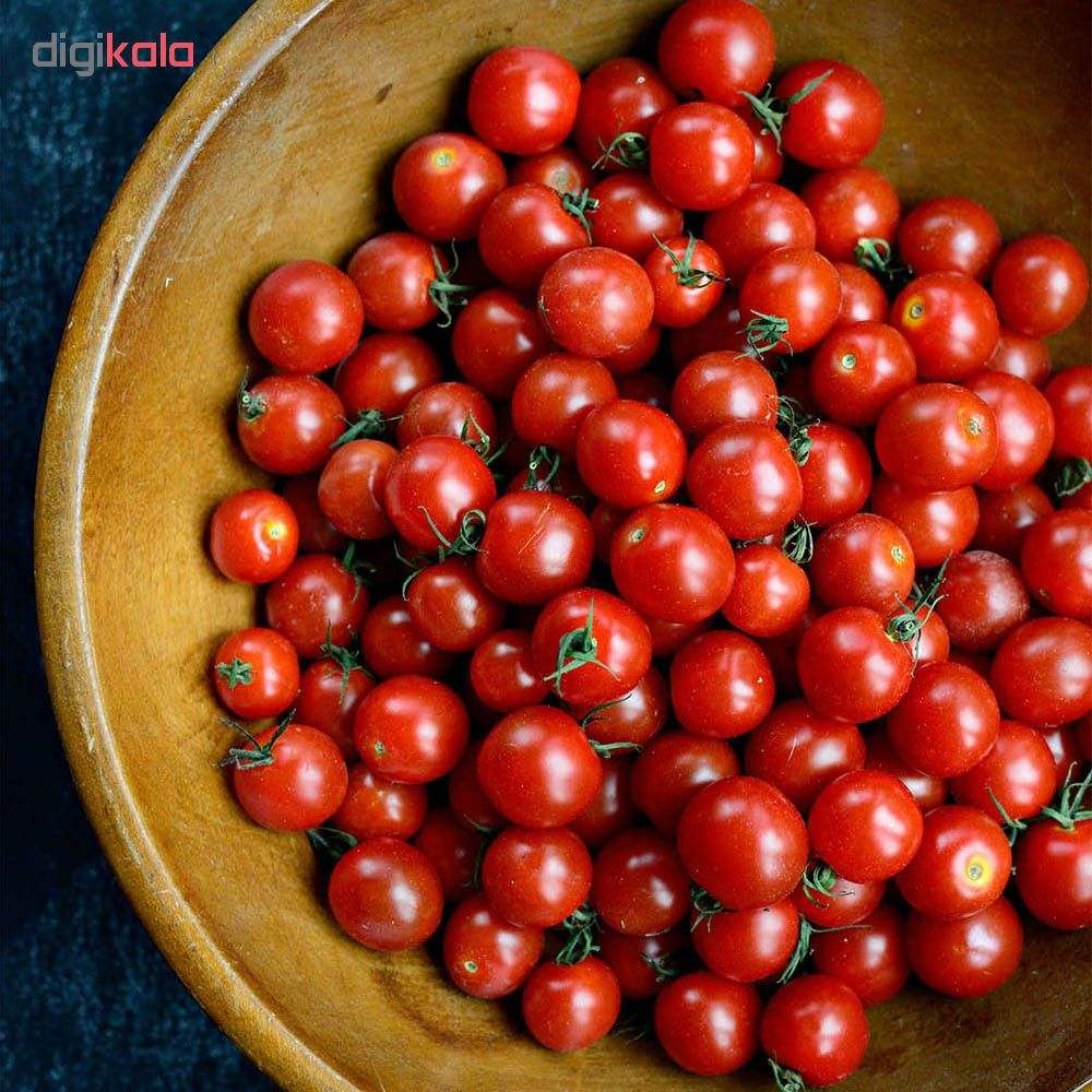 بذر گوجه گیلاسی قرمز چری مدل 085 main 1 2