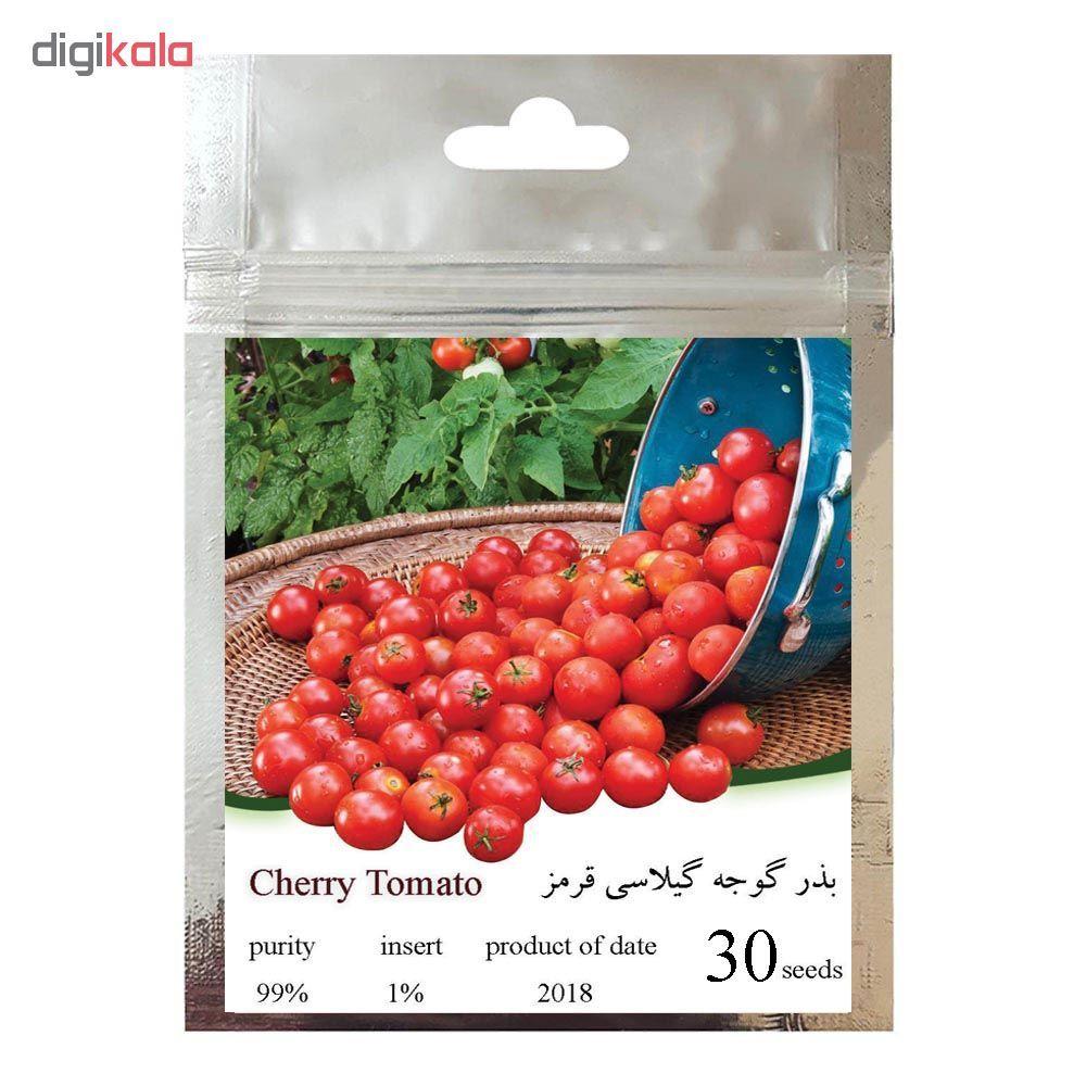 بذر گوجه گیلاسی قرمز چری مدل 085 main 1 3
