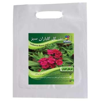 بذر گل قرنفل الوان گلباران سبز