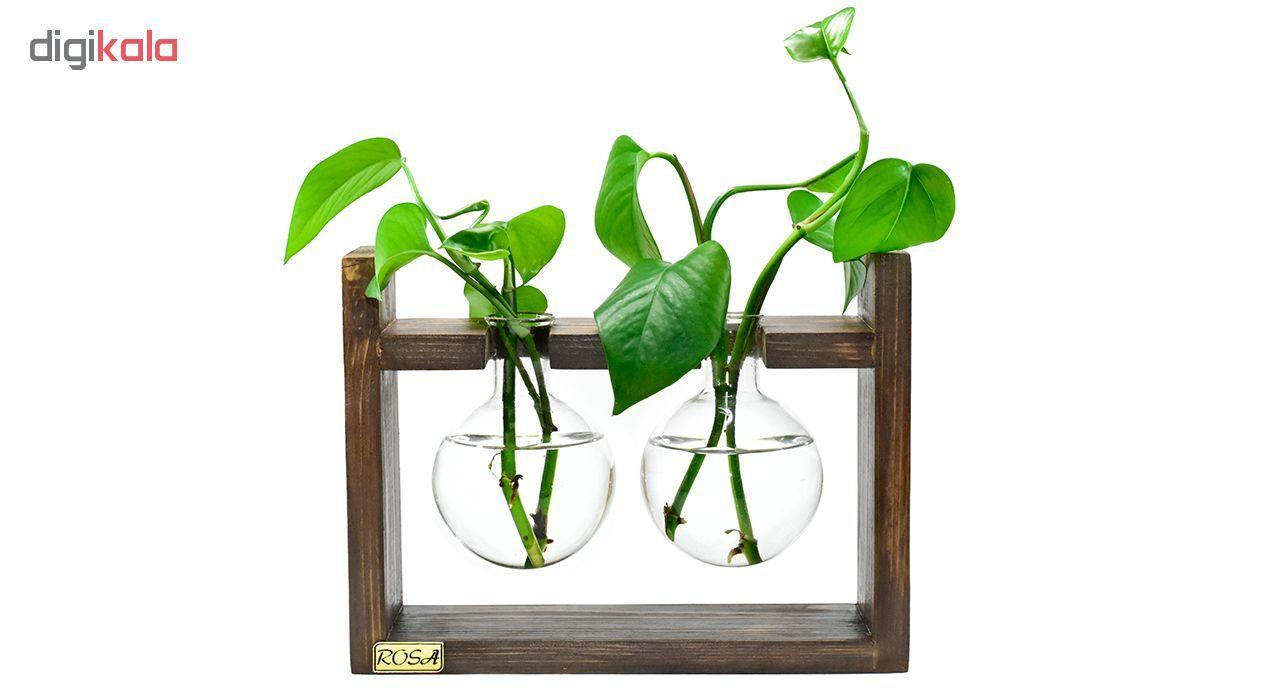 گلدان رزا مدل hydroponic 2 main 1 1