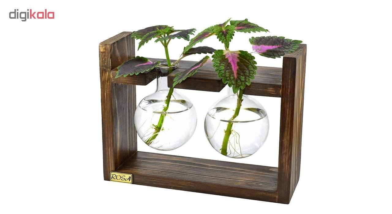 گلدان رزا مدل hydroponic 2 main 1 2