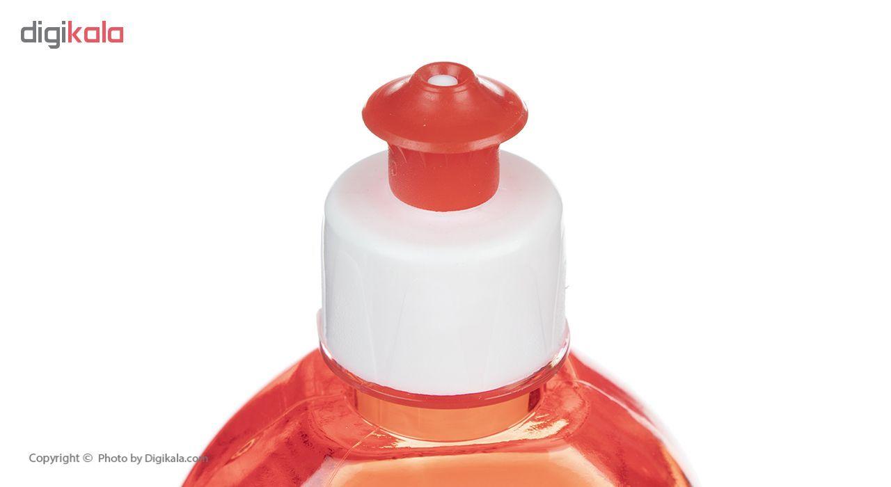 مایع ظرفشویی پاکناز مدل Strawberry حجم 700 میلی لیتر main 1 3