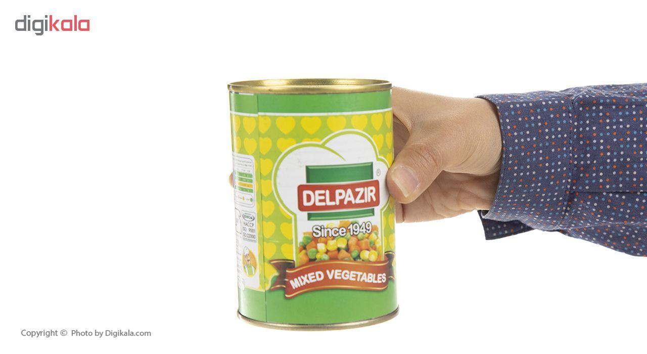 کنسرو سبزیجات مخلوط دلپذیر - 420 گرم main 1 4