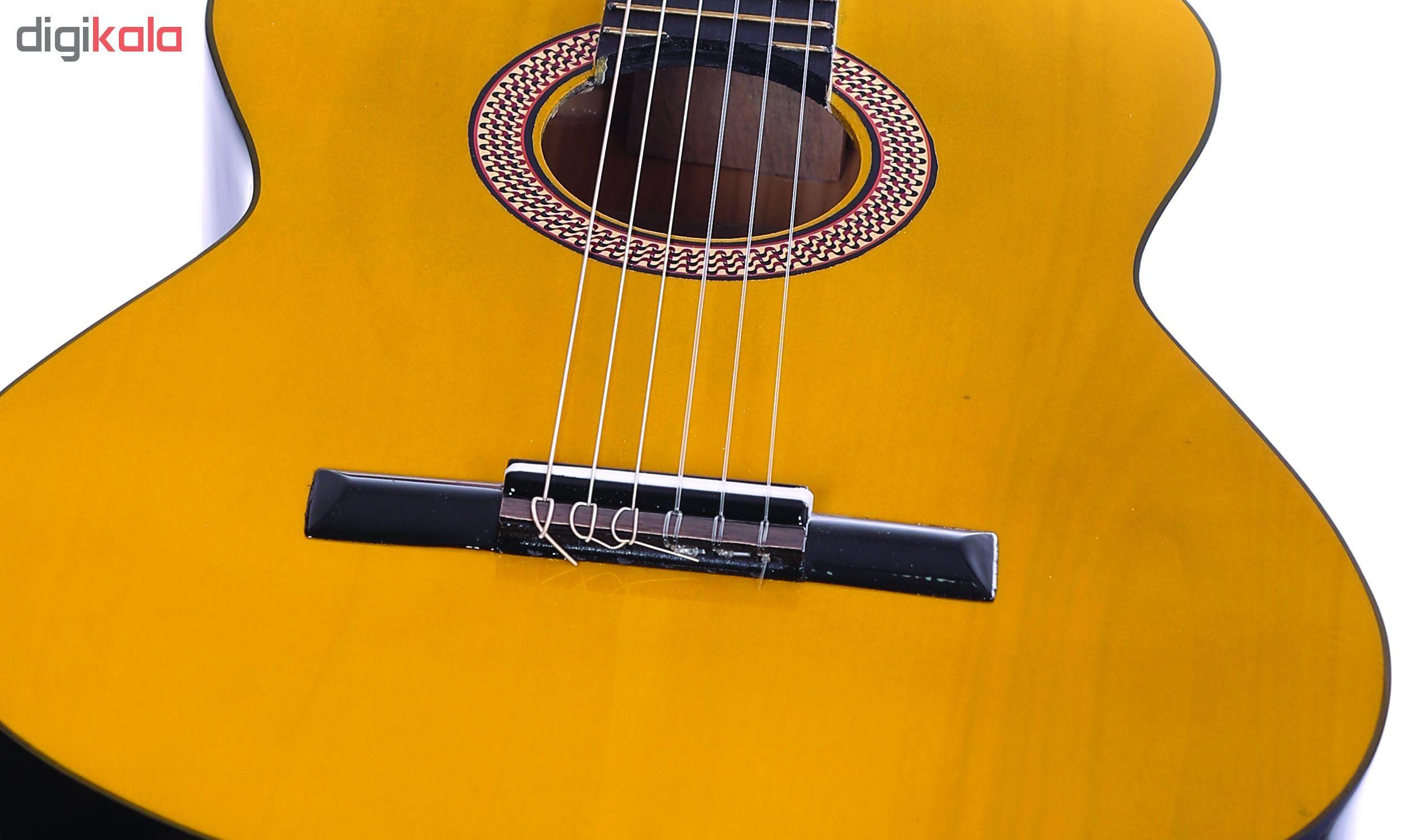 گیتار دایموند مدل TS600 main 1 14