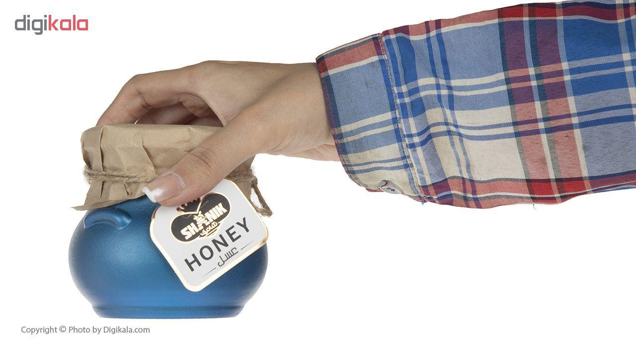 عسل مینا شانیک - 500 گرم main 1 1