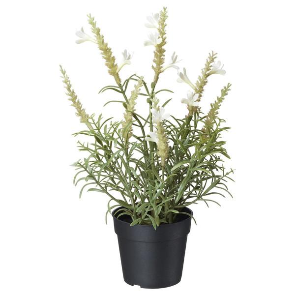 گلدان به همراه گل مصنوعی ایکیا مدل Fejka 80429516