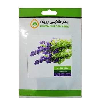 بذر گیاه دارویی اسطوخودوس بذر طلایی رویان کد BZT-108
