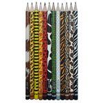 مداد مشکی آریا مدل ZOO SET کدA1  بسته 12 عددی thumb