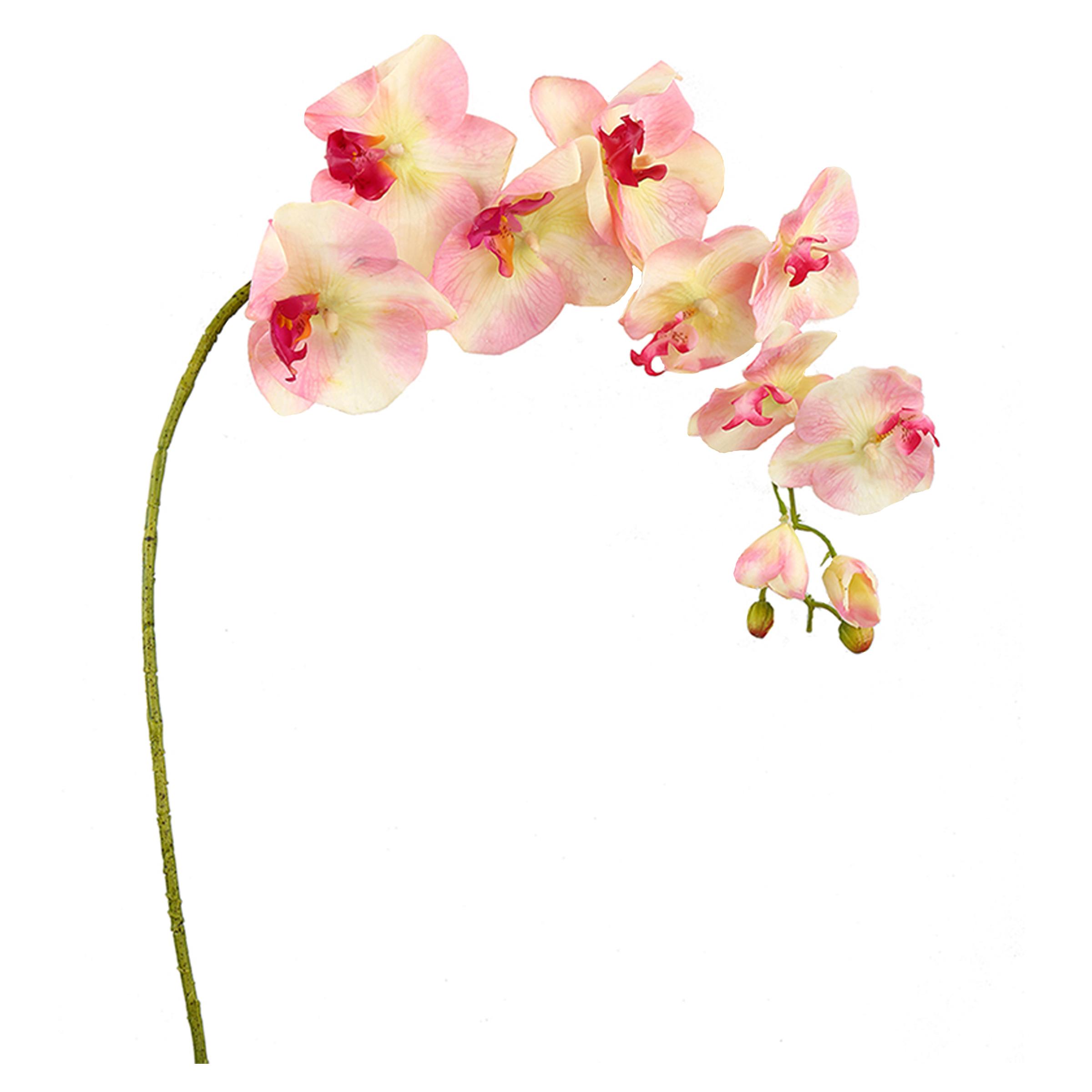 گل مصنوعی هومز طرح شاخه ارکیده کد 50109 بسته 2 عددی