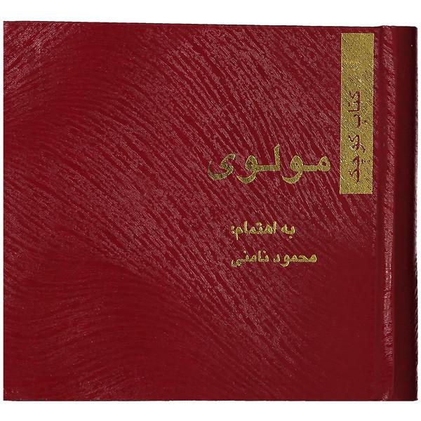 کتاب مولوی اثر محمود نامنی