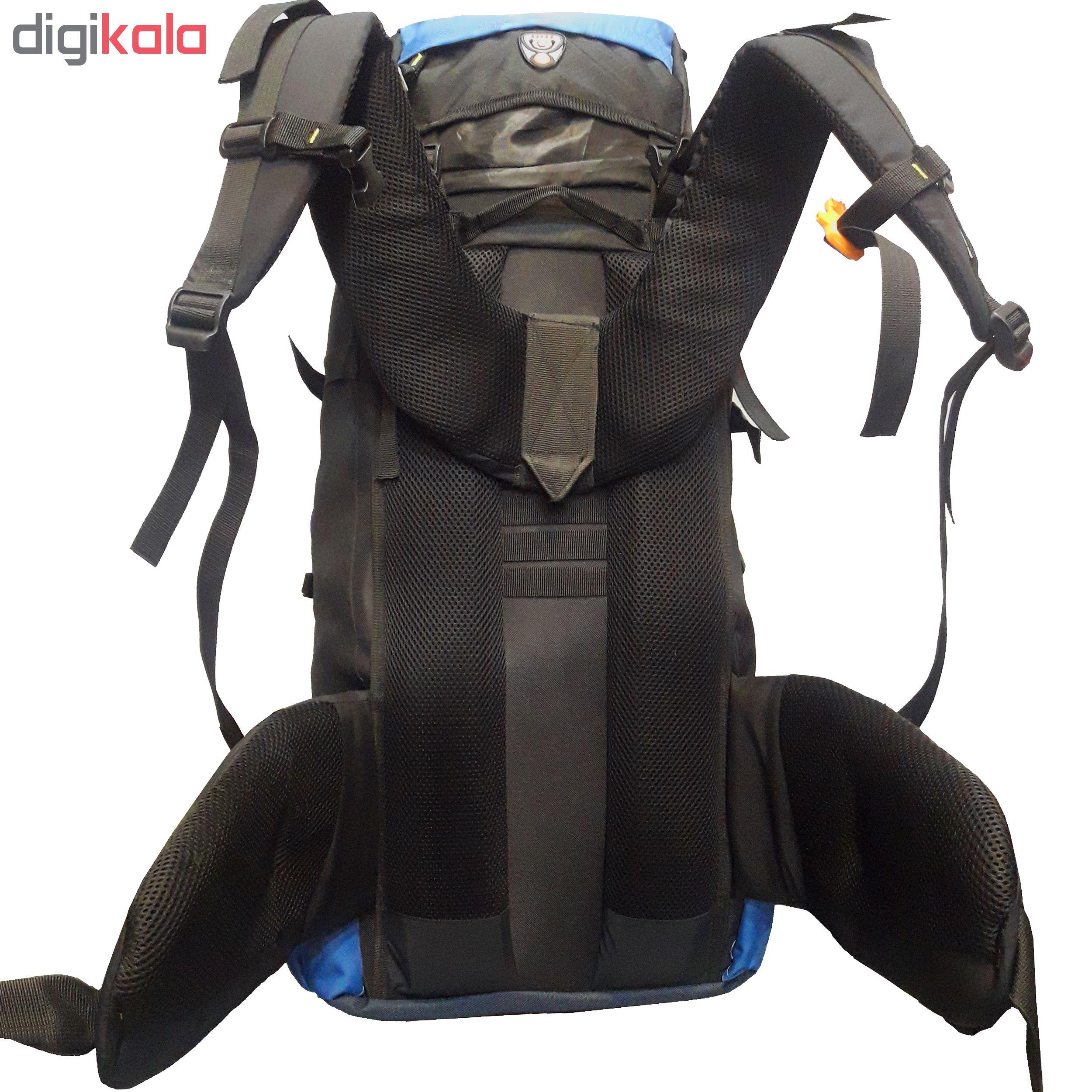 کوله پشتی کوهنوردی 70 لیتری مدل D650 main 1 4