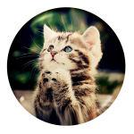 پیکسل طرح گربه کد i5 thumb