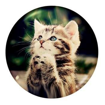 پیکسل طرح گربه کد i5