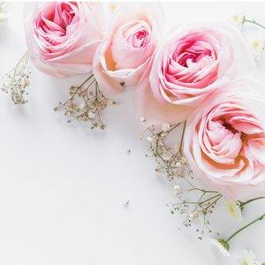 استیکر کاشی طرح pink flower بسته 10 عددی