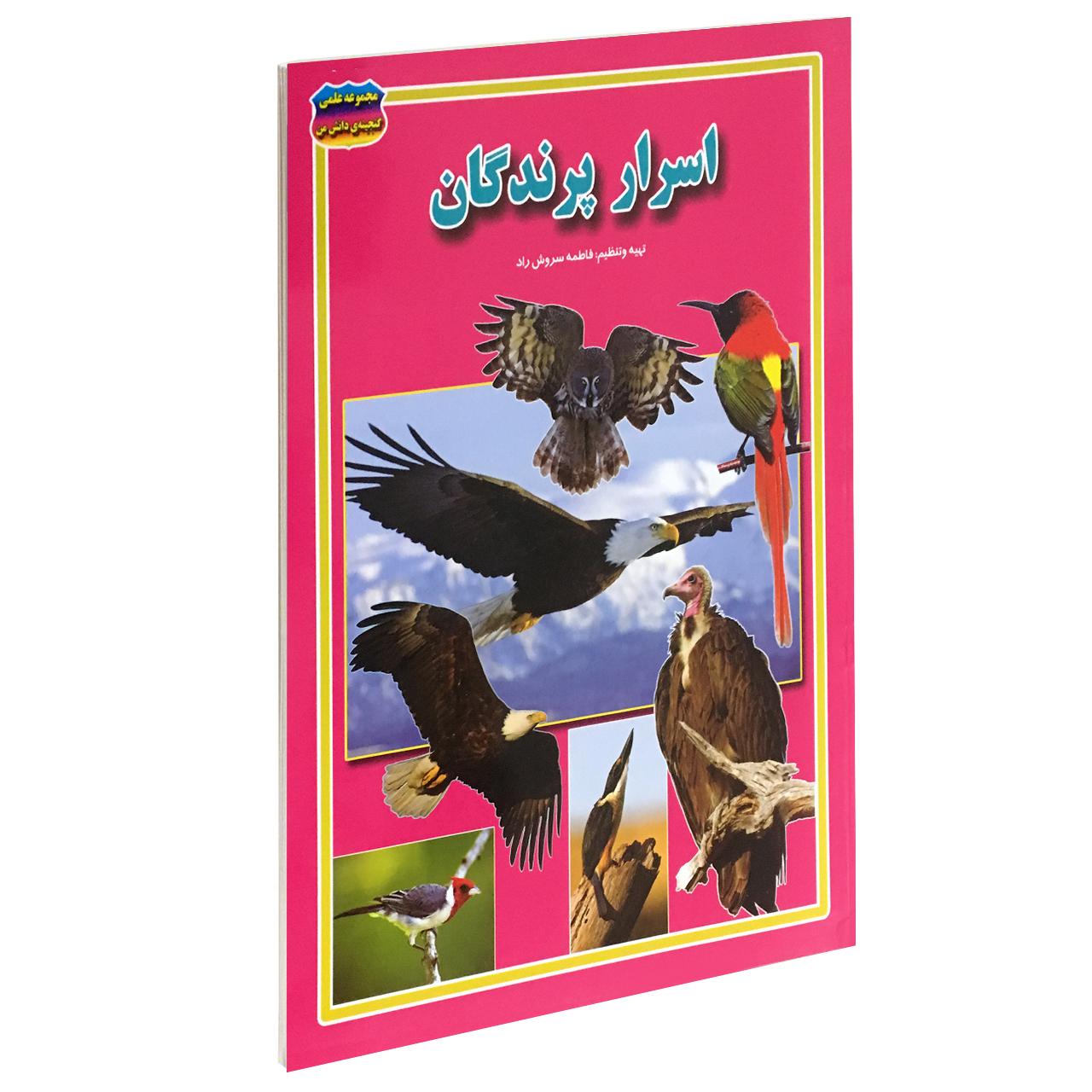 خرید                      کتاب اسرار پرندگان اثر فاطمه سروش راد انتشارات حباب