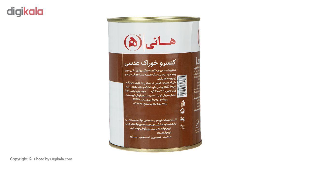 کنسرو خوراک عدسی هانی - 380 گرم main 1 2
