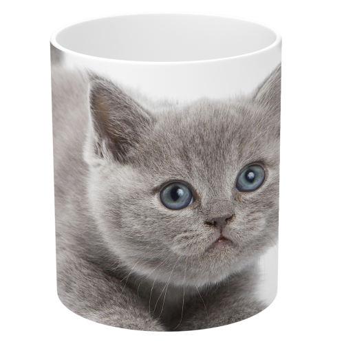 ماگ طرح بچه گربه خاکستری مدل NI460