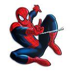 استیکر چوبی دکوماس طرح مرد عنکبوتی کد  DMS-WS148
