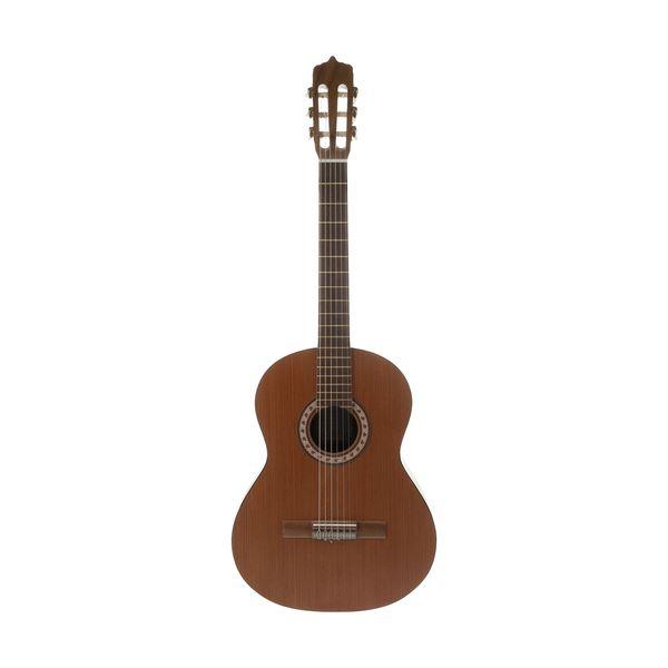 گیتار پارسی مدل M6