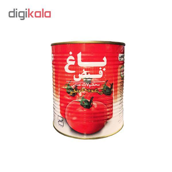 رب گوجه فرنگی باغ فیض مقدار 800 گرم