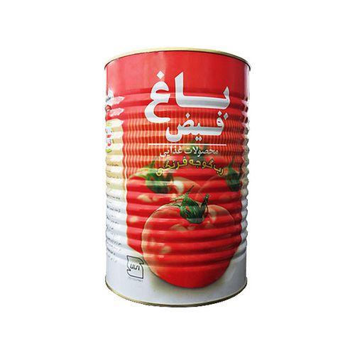 رب گوجه فرنگی باغ فیض مقدار  4200 گرمی
