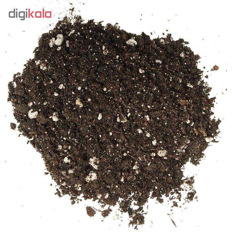 خاک و کود آماده کاشت گیلدا کد GK11L حجم 11 لیتر