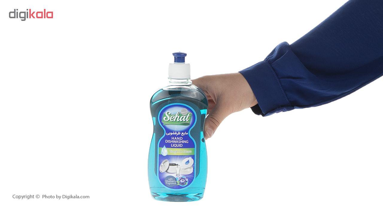 مایع ظرفشویی صحت مدل Blueberry مقدار 500 گرم main 1 4