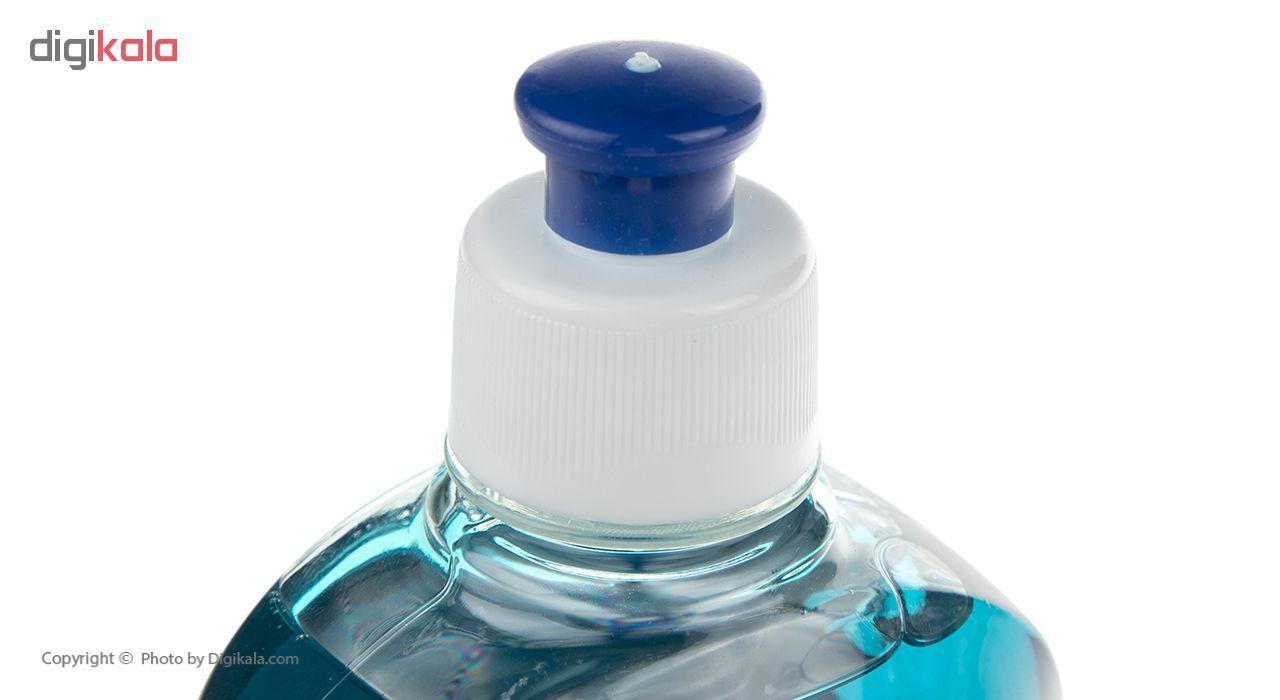 مایع ظرفشویی صحت مدل Blueberry مقدار 500 گرم main 1 3