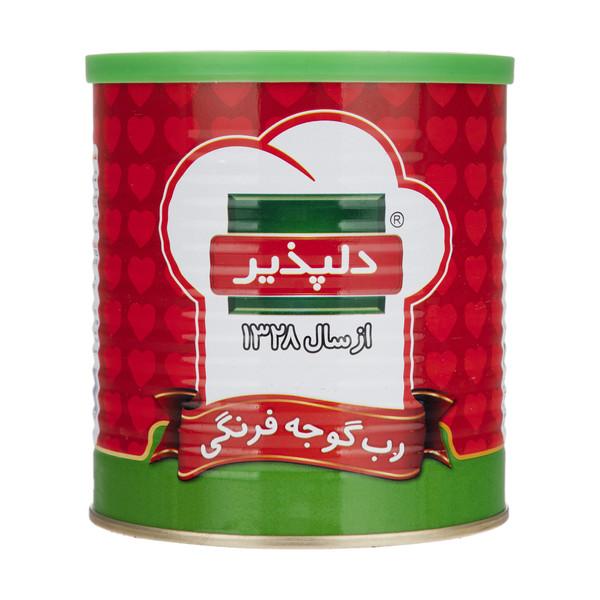 رب گوجه فرنگی دلپذیر مقدار 800 گرم