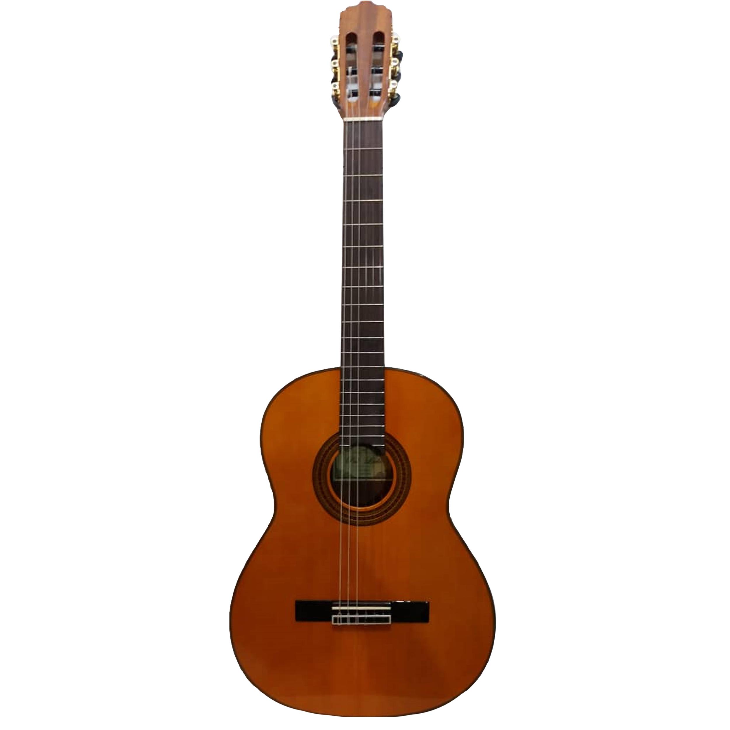 گیتار کلاسیک پالادو مدل CG 80-EQ