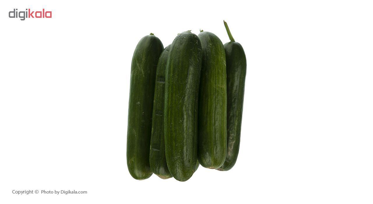 خیار گلخانه ای دست چین هودکا - 500 گرم main 1 3